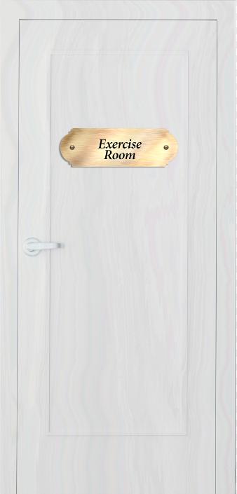 excercise door